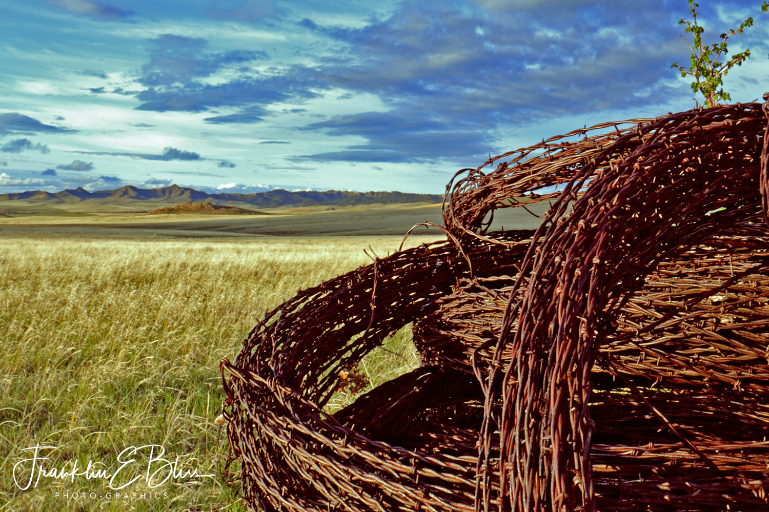 Spools of Old Barbed Wire on the Prairie