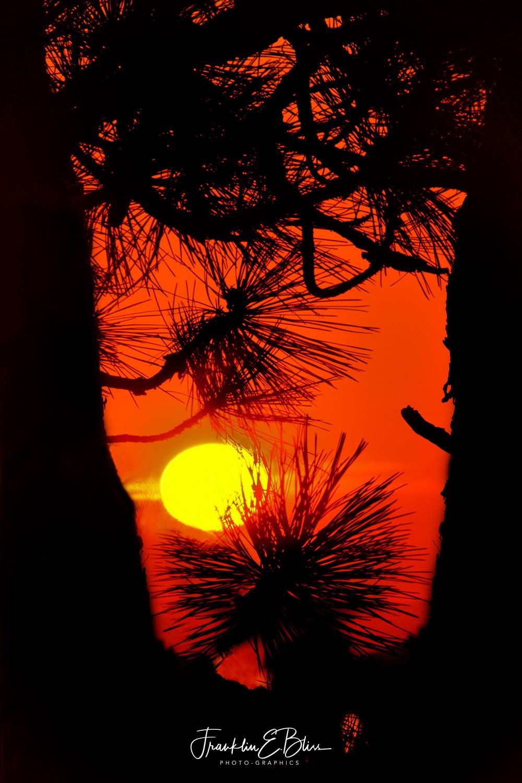 Summer Smokey Sunset