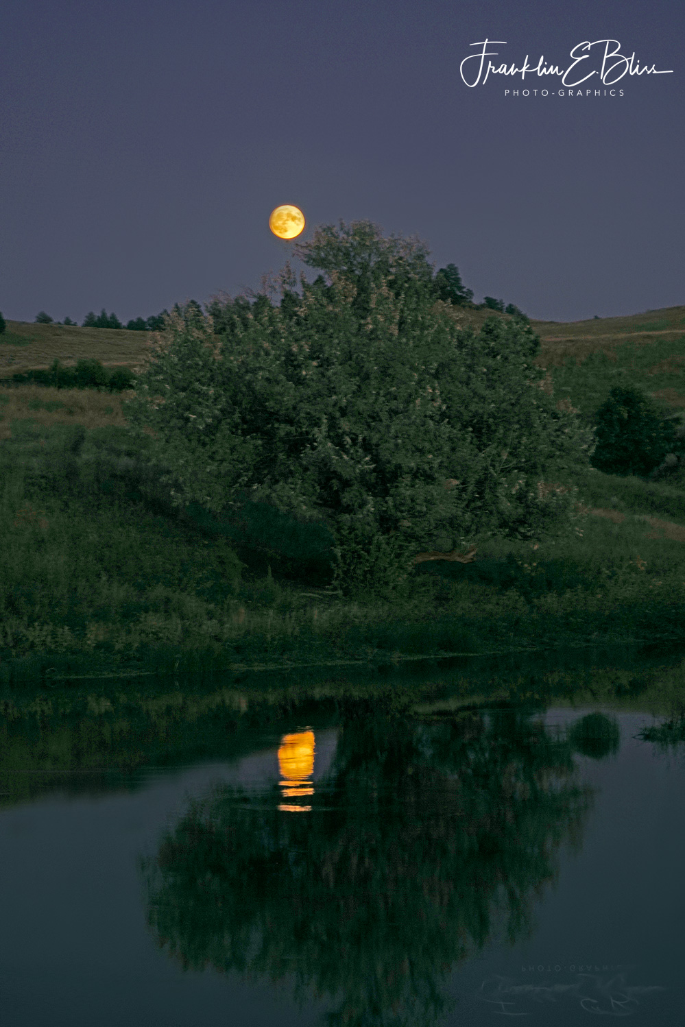 Reflections: Full Moon over Wetlands