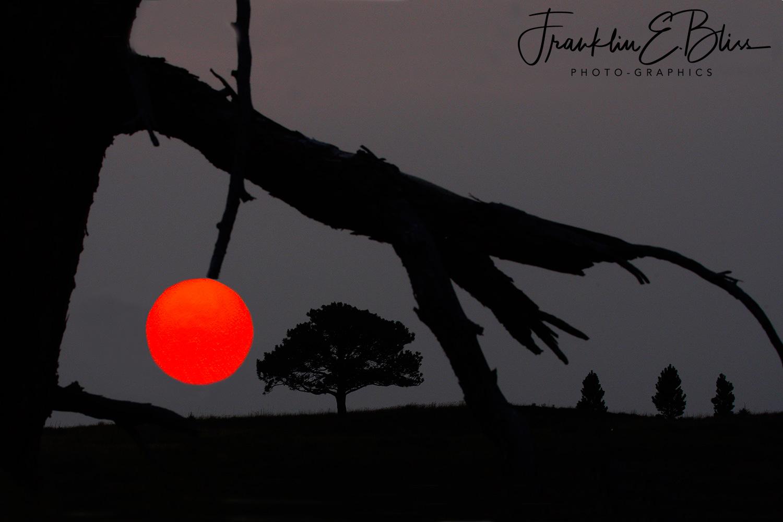 Hot Cherry Sunset