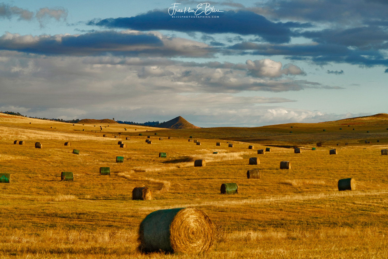 Perspective: Hay Bales on Mitten Butte's Apron