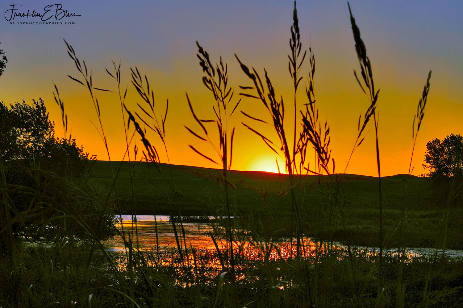 Clear Sky Sunrise from the Borderland Wetlands
