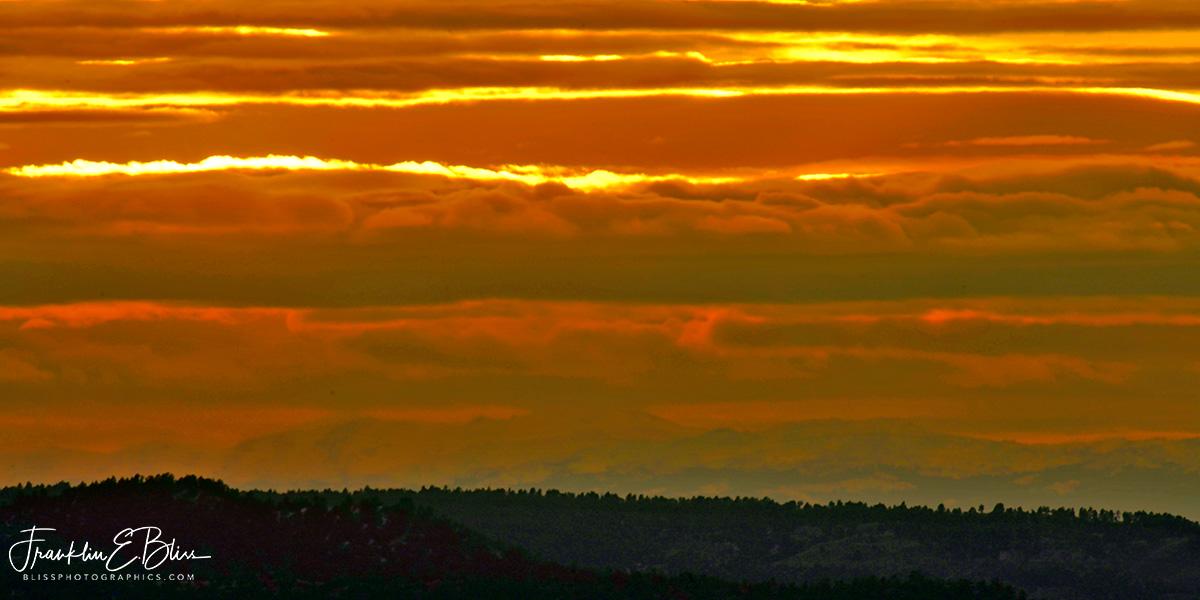 Orange Banded BigHorn Mountains