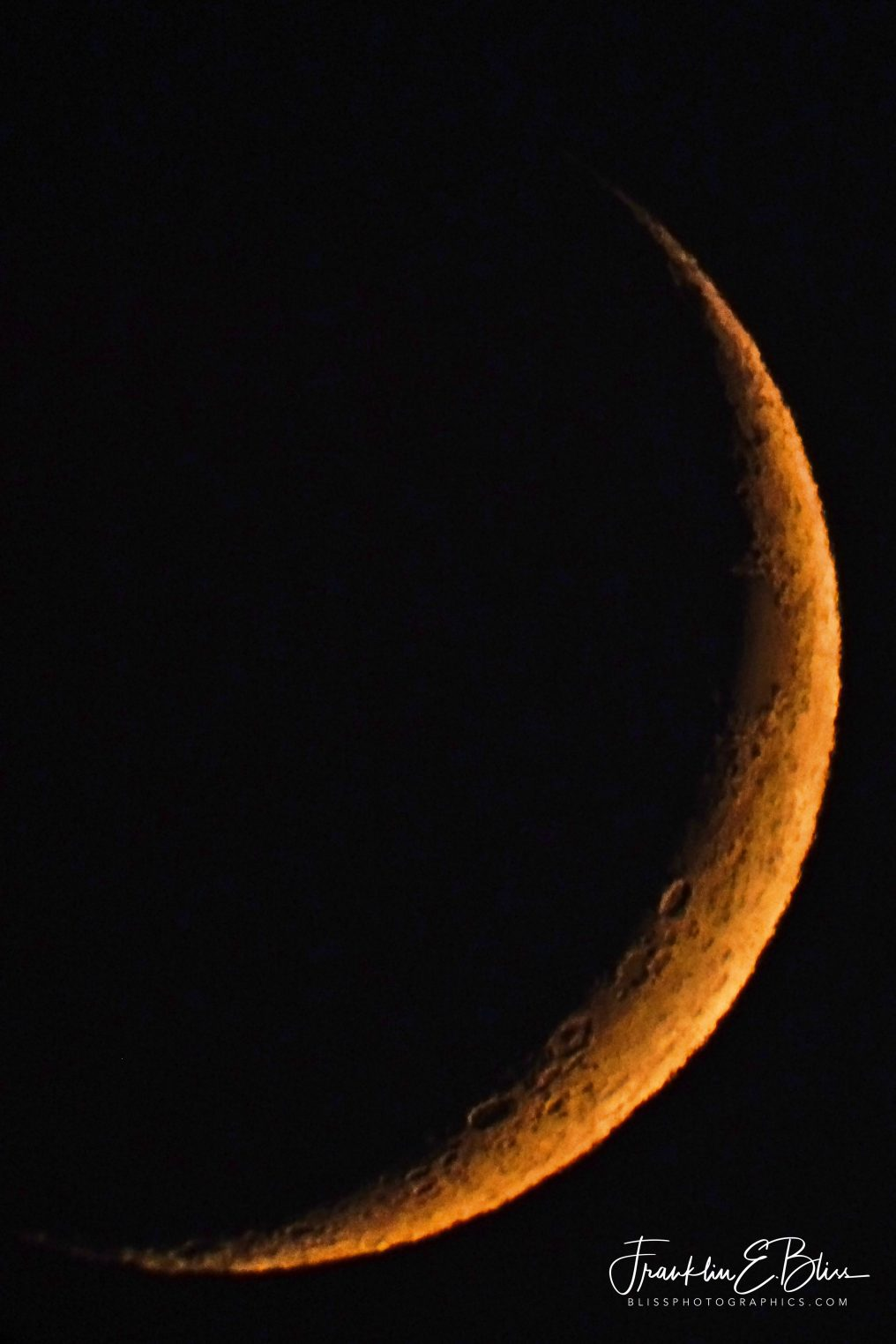 Low Sky Crescent Moon