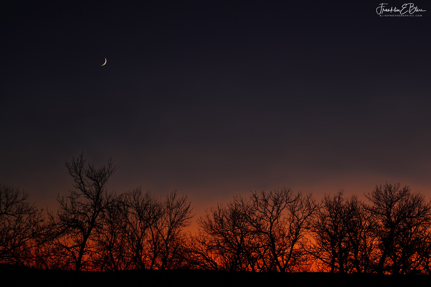 Crescent Moon in Twilight
