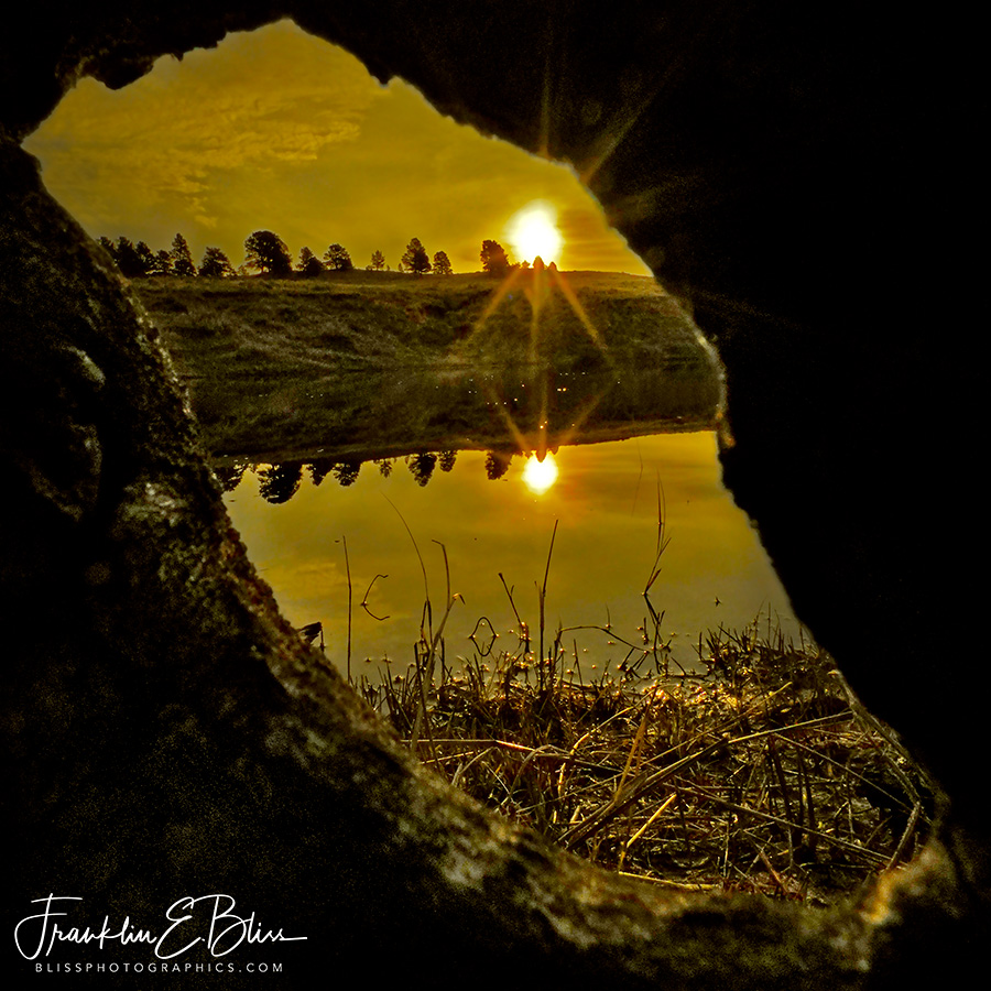 Sunrise Through the Knothole