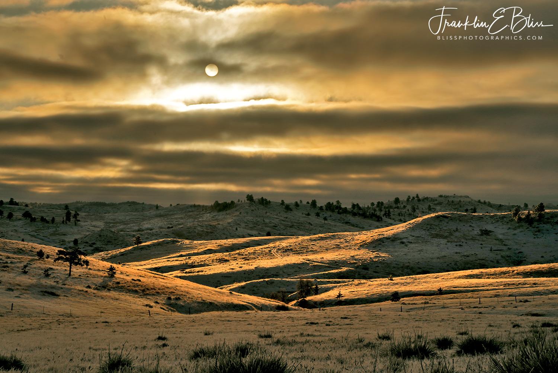 Spotlighting in the Borderland Backcountry
