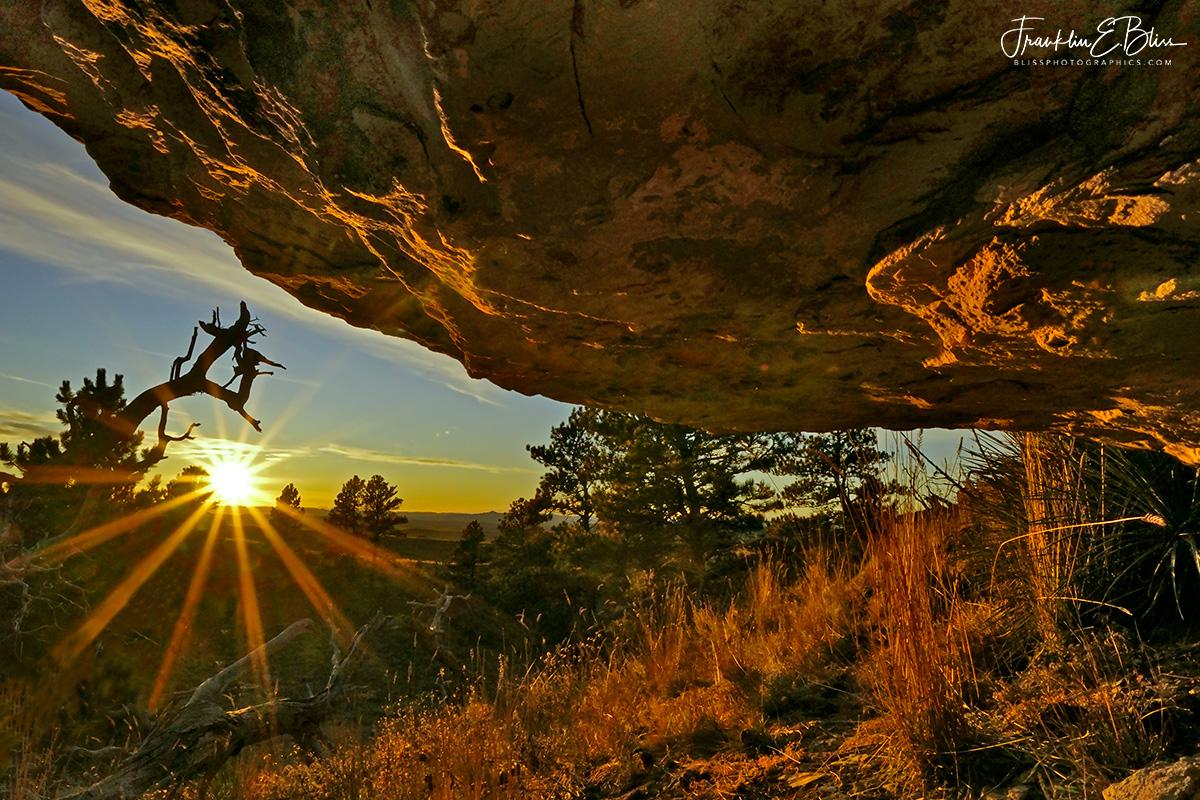 Perspective: Rock Ledge Shelter