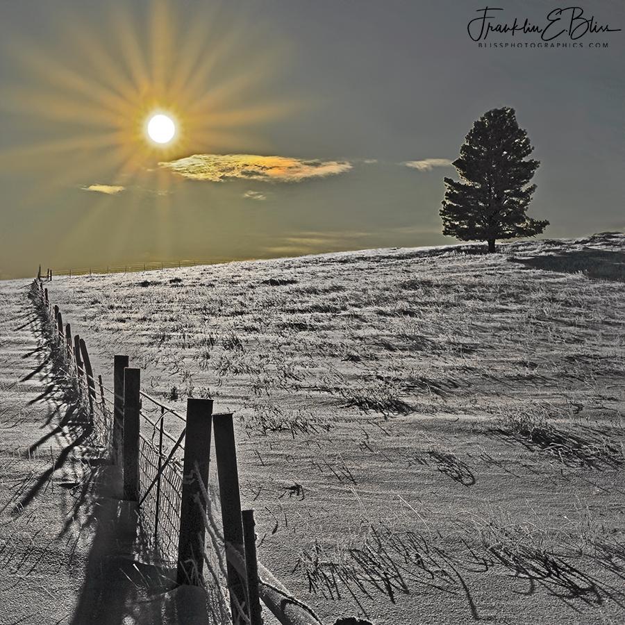 Divergent Shadow Perspective Landscape