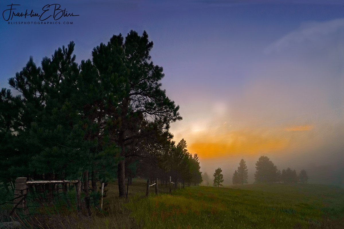 Foggy Fence Line Sunrise
