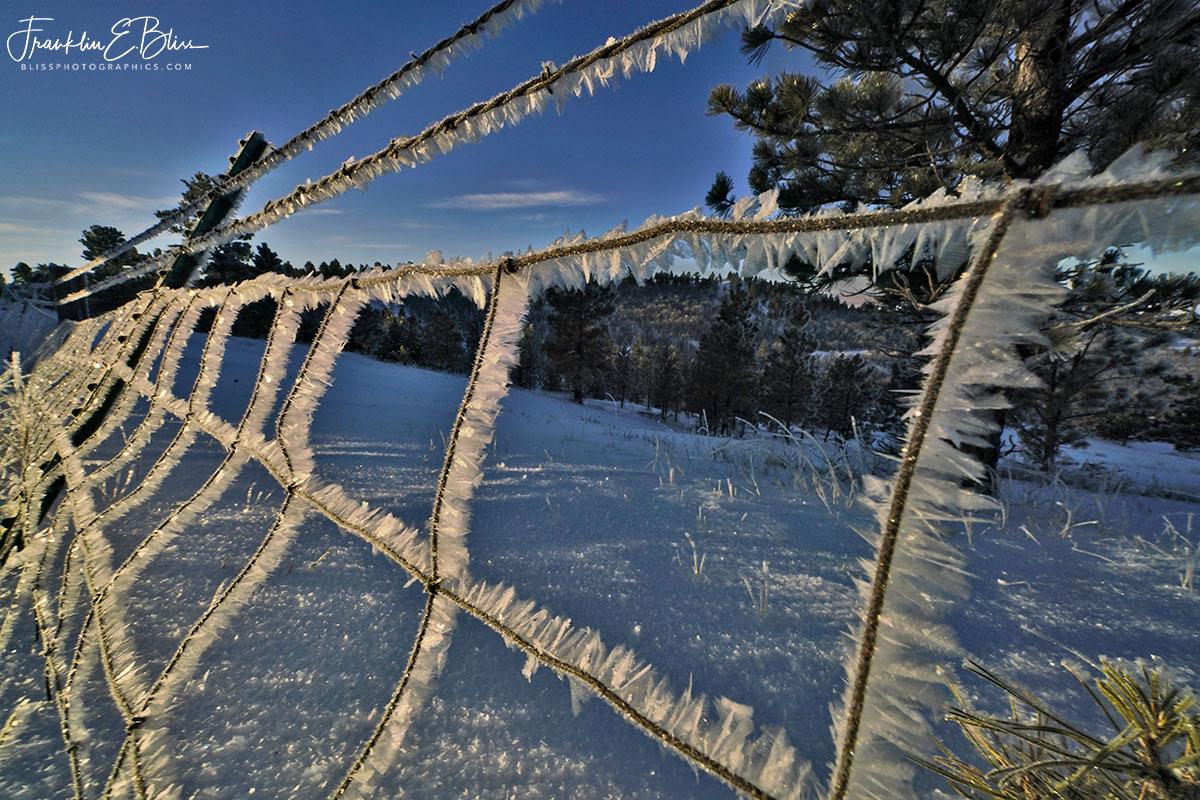 Woven Wire Hoar Frost