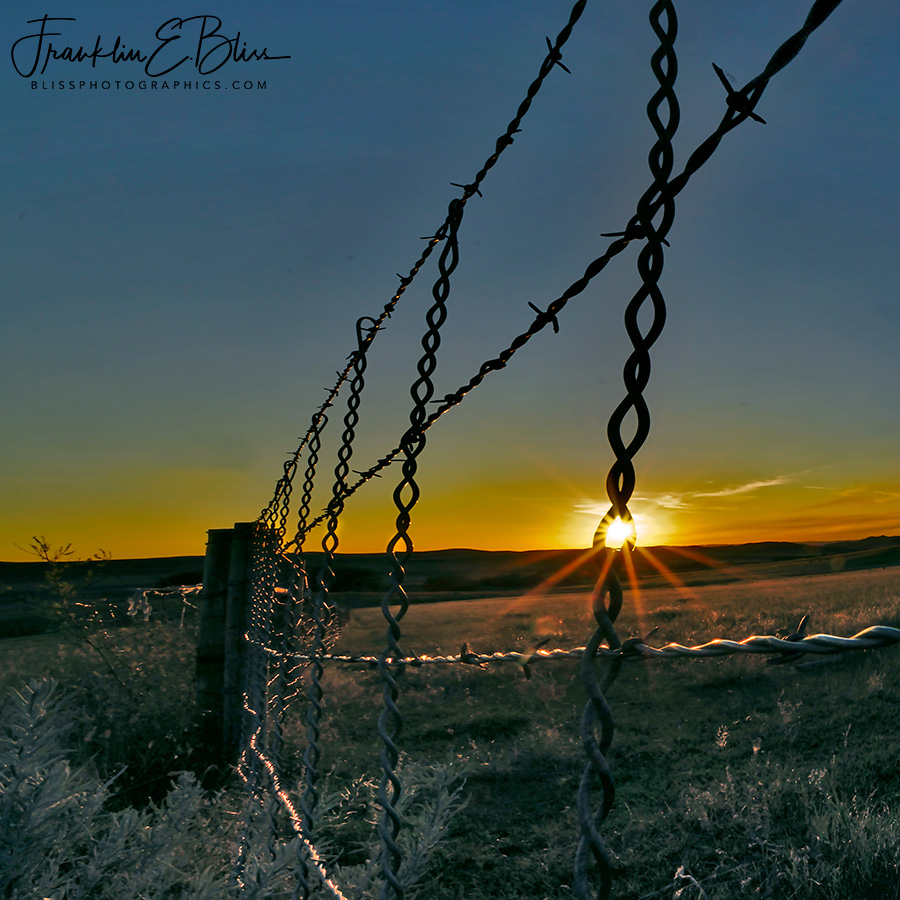 Perspective Border Fence Line
