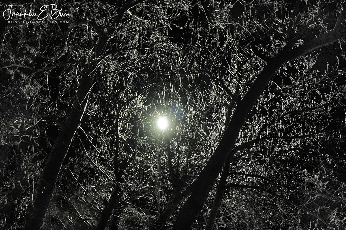Reflections: Ice Covered Night