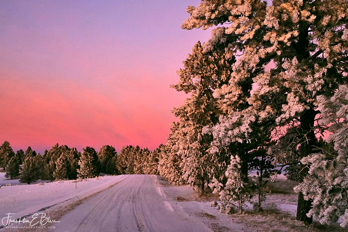 Alpenglow Frosty Backcountry Drive