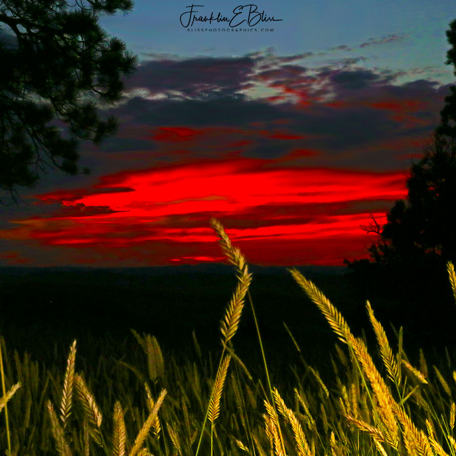 Perspective Grassy Crimson Sunset