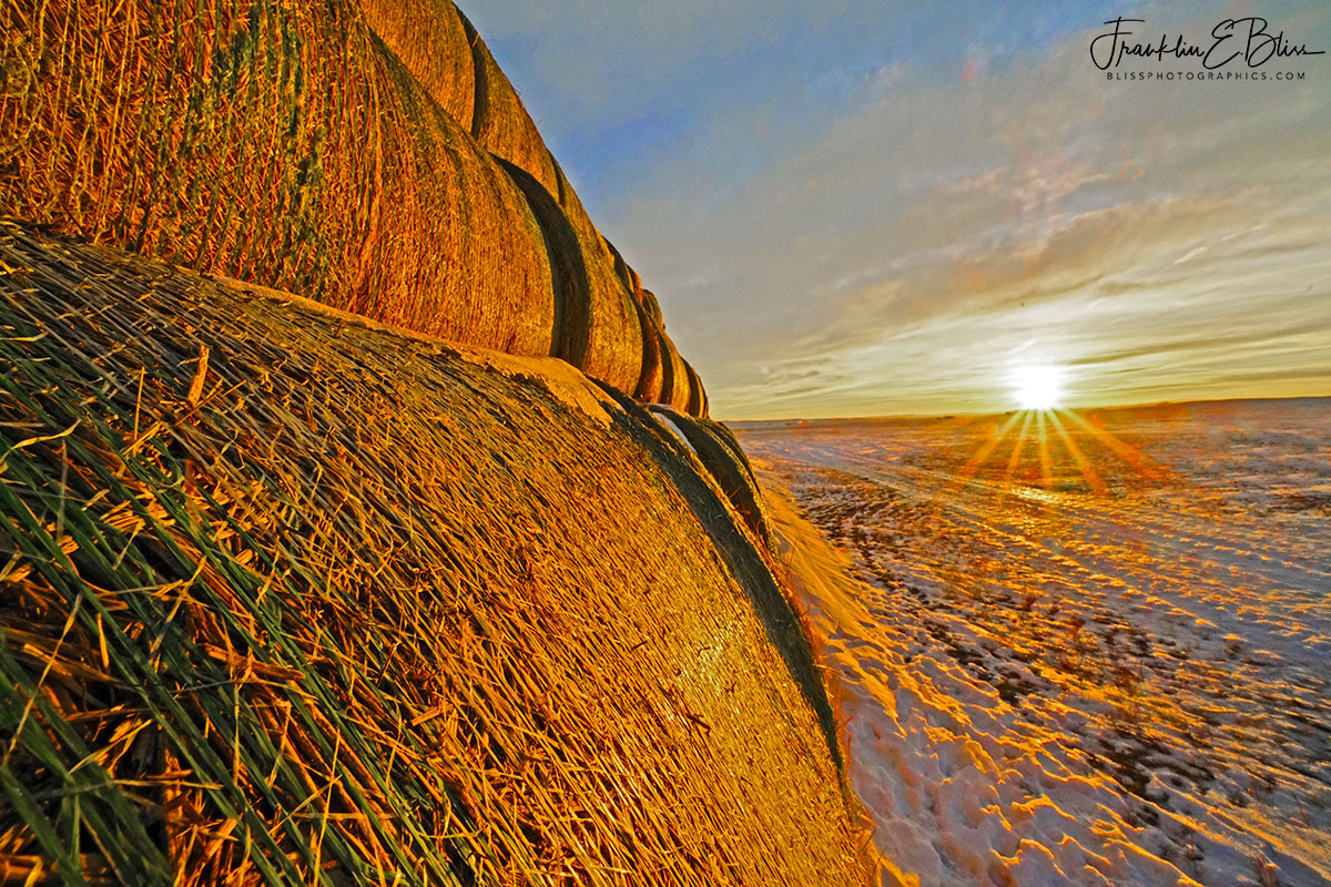 Perspective Hay Bale Sunrise