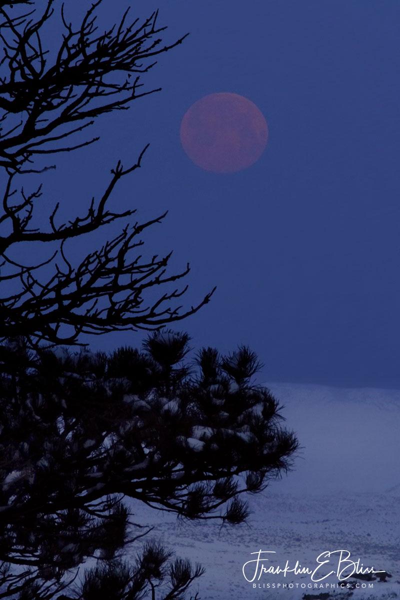 Moonset over Winter Highlands