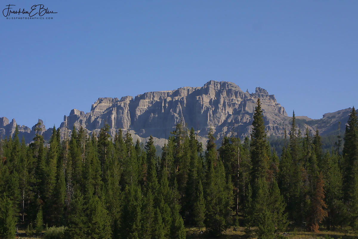 The Pinnacles: Wiggins Formation