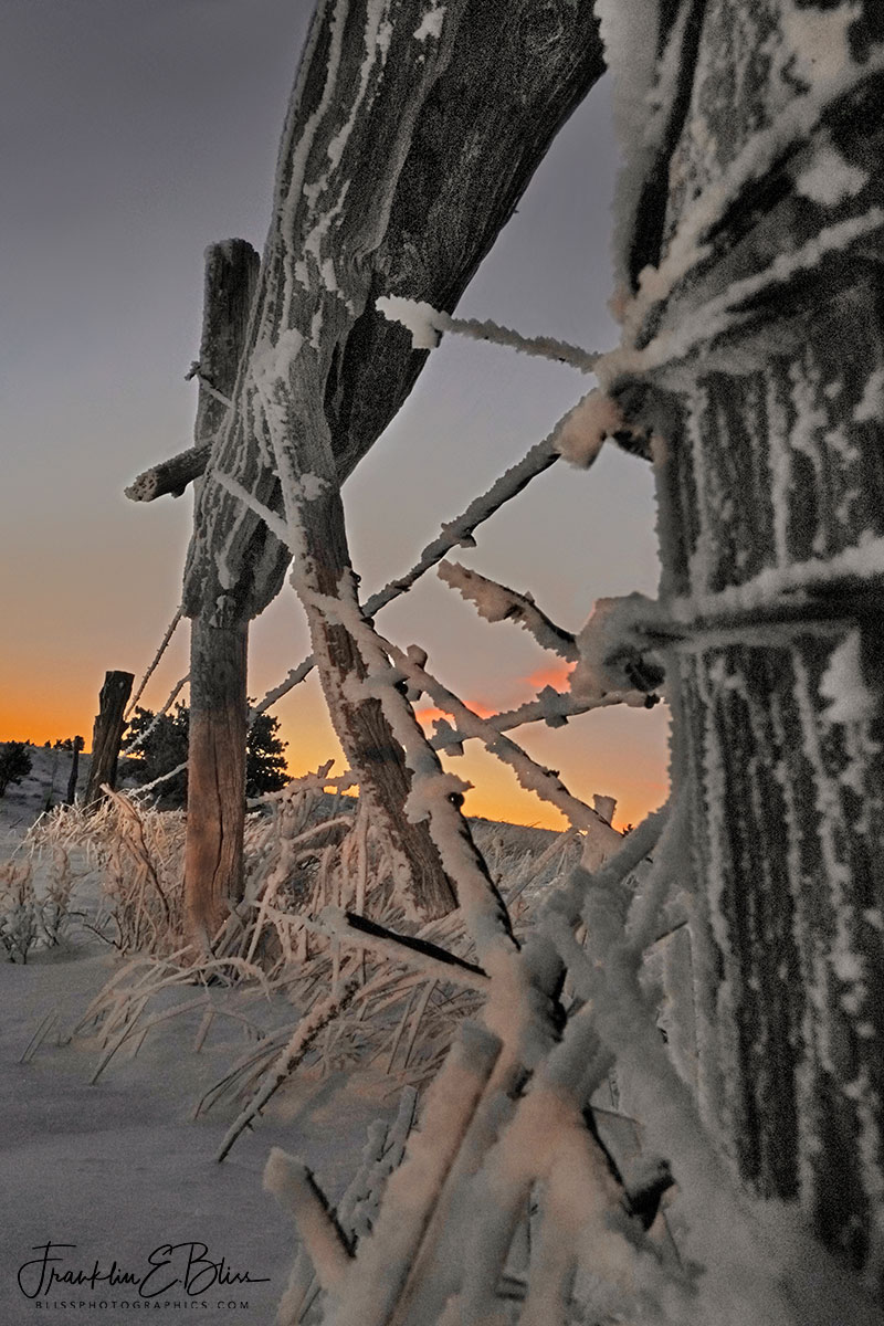 Frosty Fence Brace Sunrise