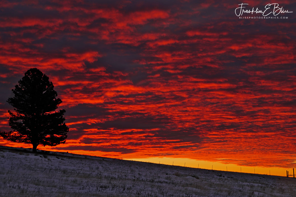 Twilight Crimson Sky Show