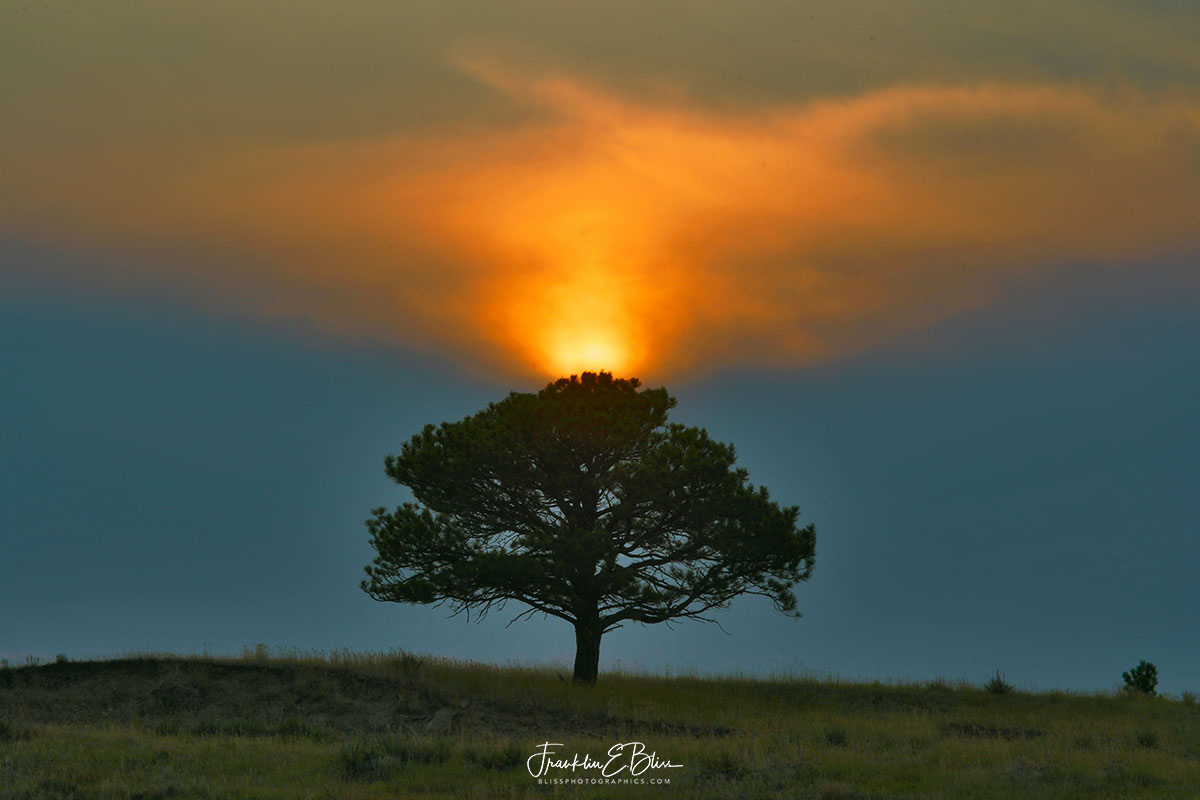 Lone Tree Sky Show