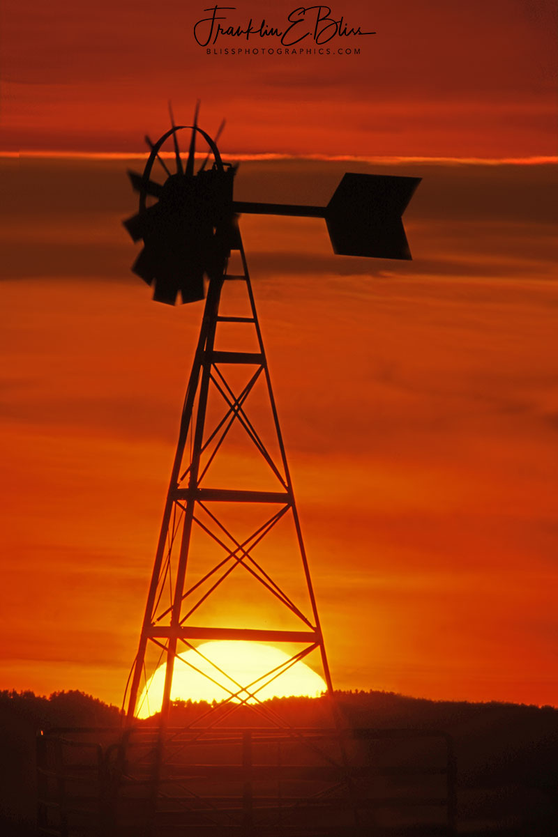 Sun Trapped by Windmill