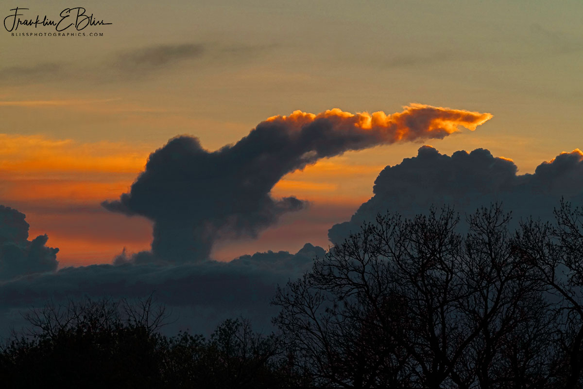 Dragon Cloud Rising