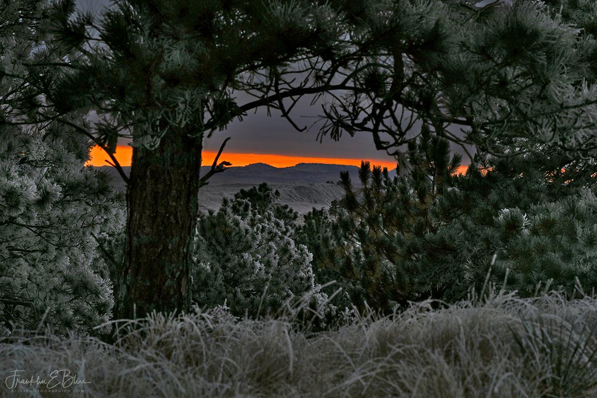 Frosty Sunrise on the Border
