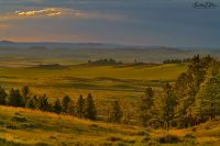 Landscape Ala Borderlands 031720F