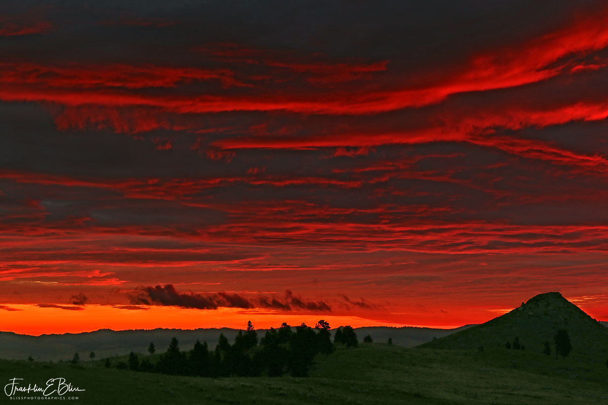 Turtle Butte Crimson Twilight