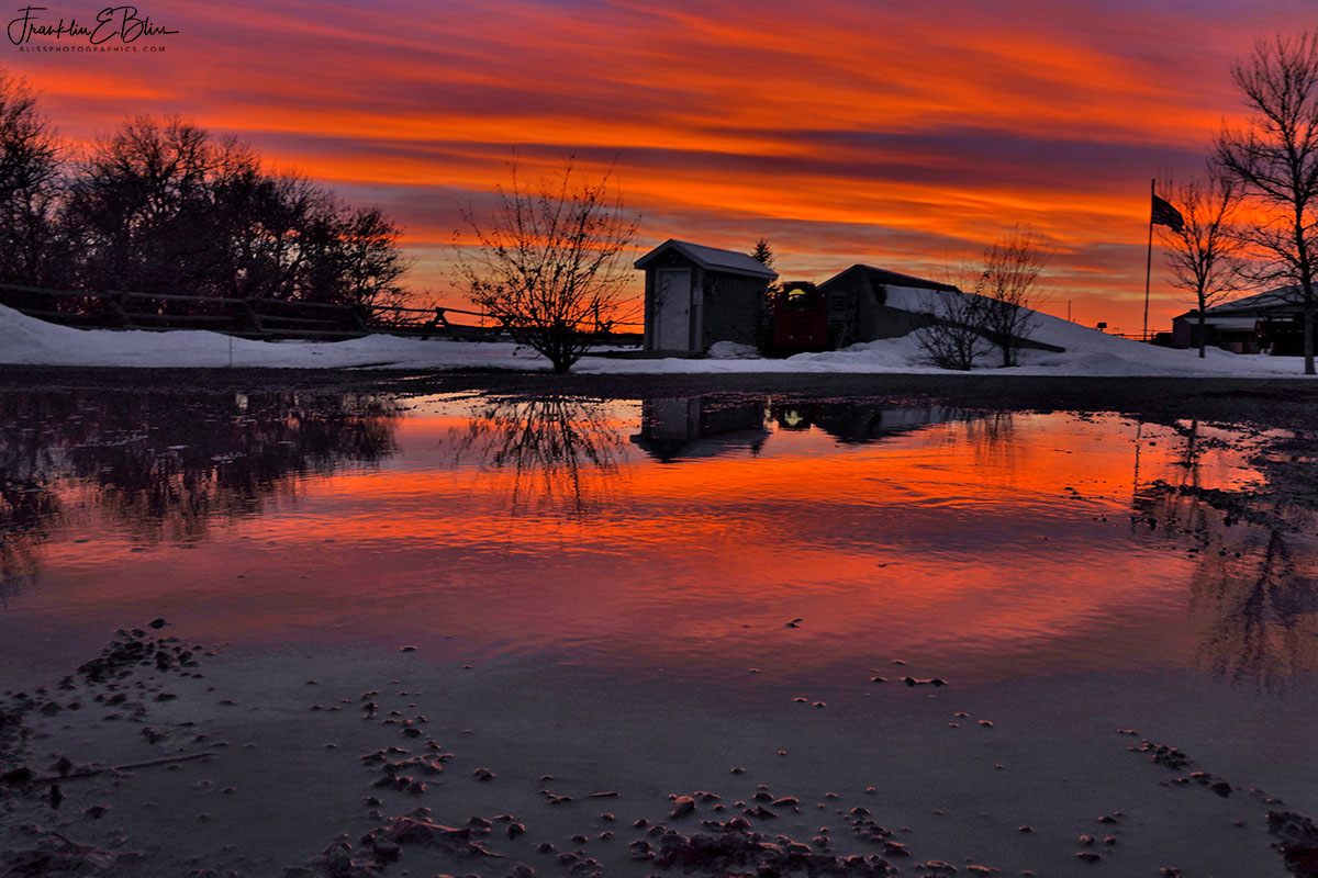 Reflections Driveway Twilight Show