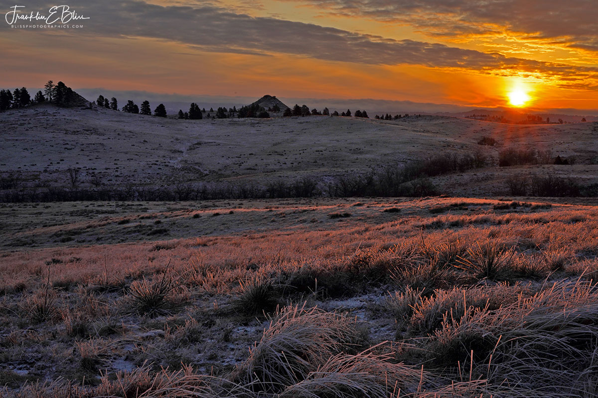 Frosty Grass Backcountry Sunrise