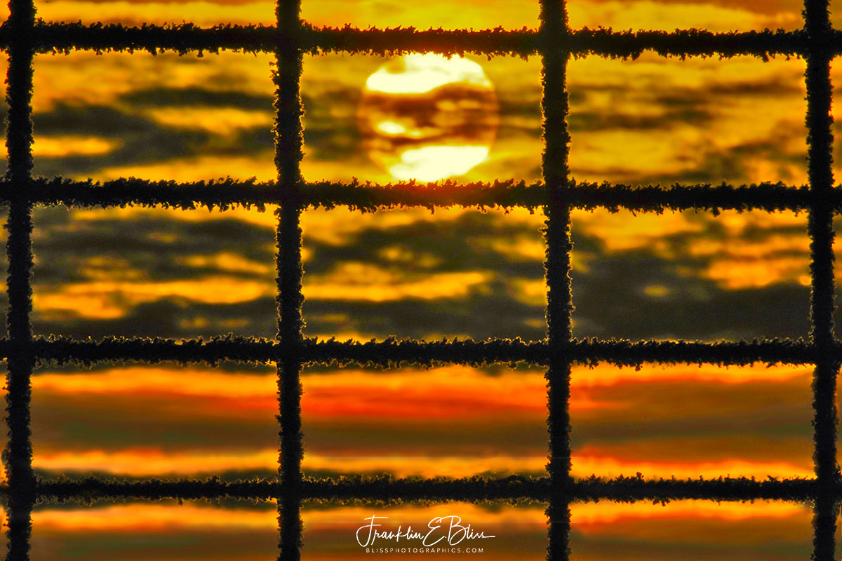 Sunrise Through Frosty Fence