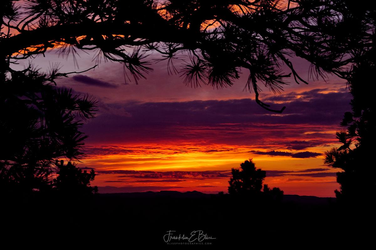 Twilight Fully Involved Sky