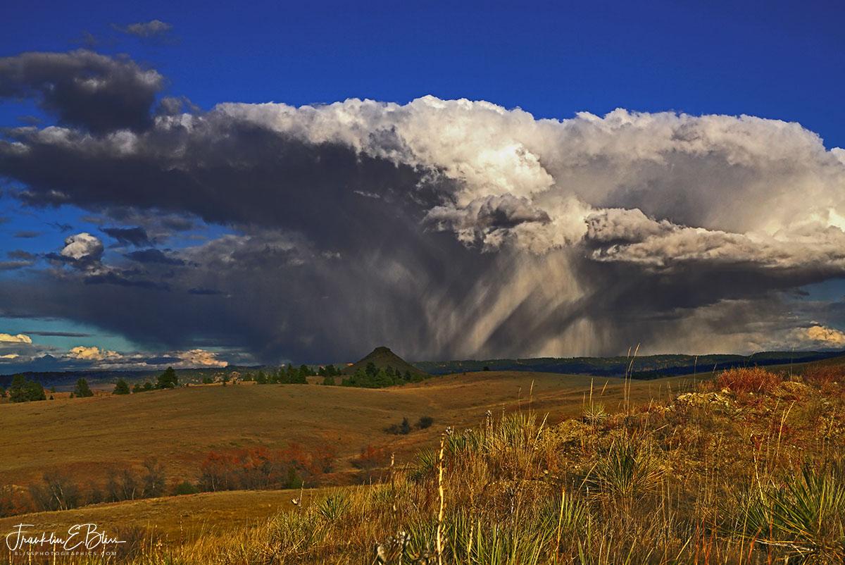 Spring Rain Showers Wyotana