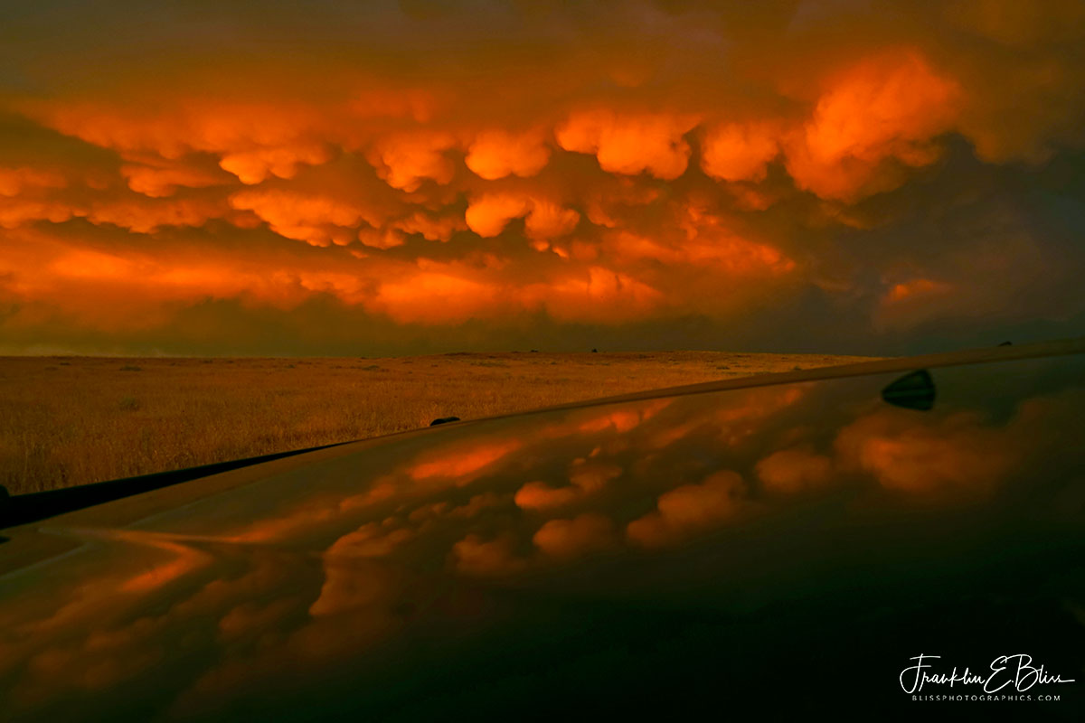 Mammatus Reflections of the Storm