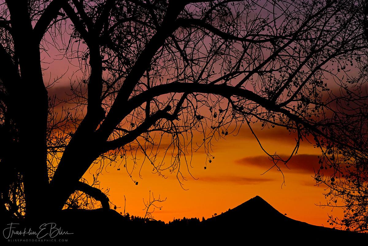 Mitten Butte Tree Frame