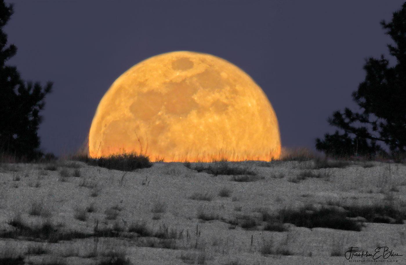 Rising Full Moon Ridge
