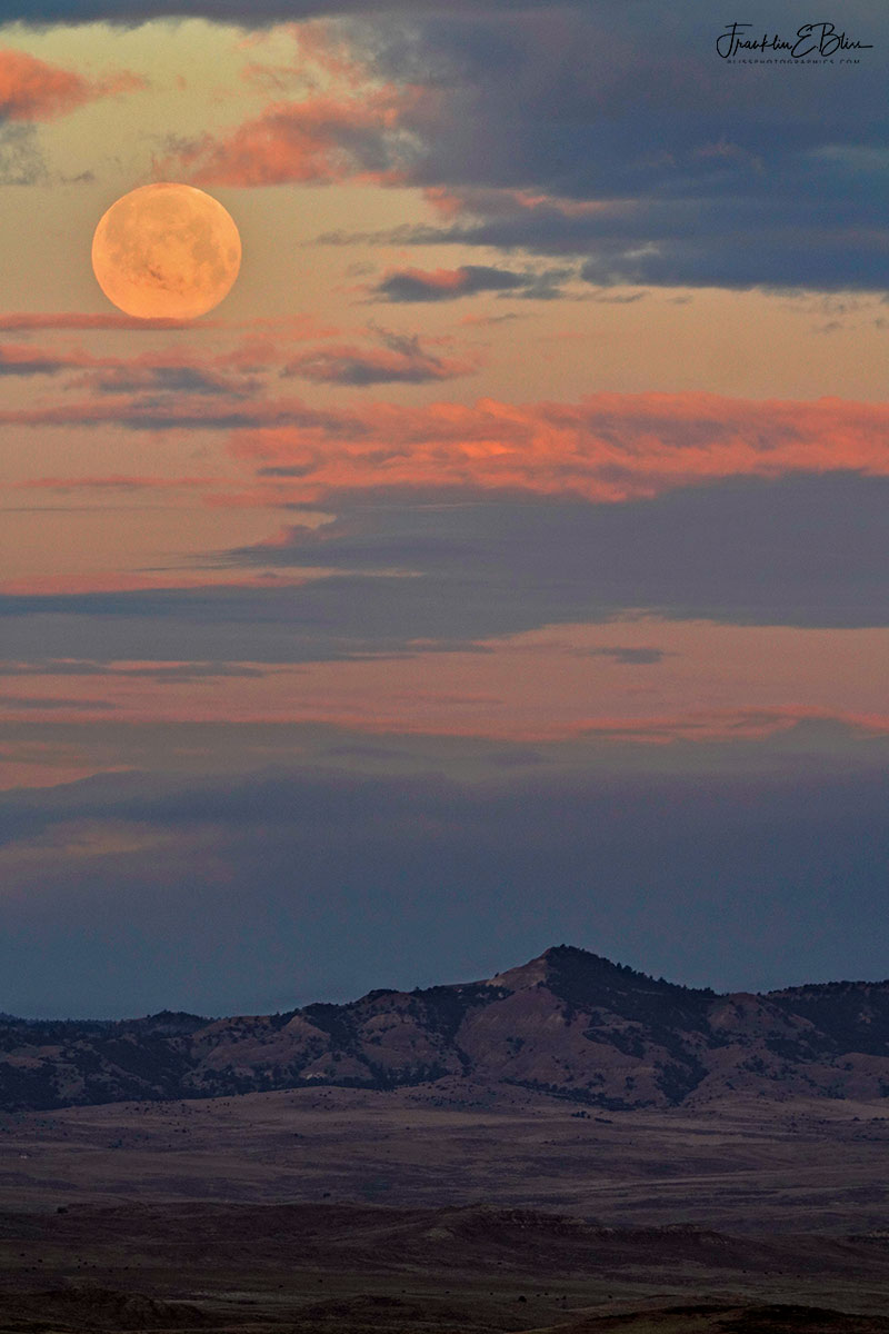 Pink Moon Red Hills