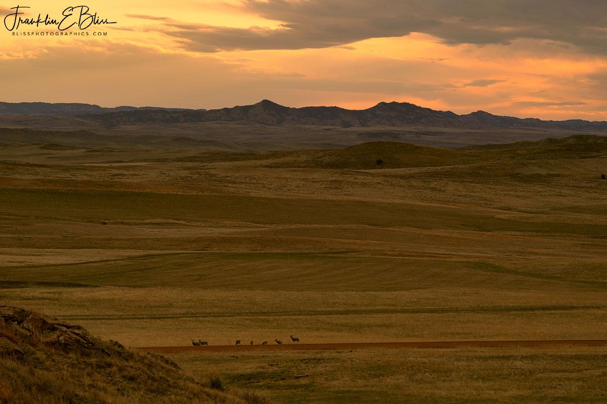 Red Hills Twilight Landscape
