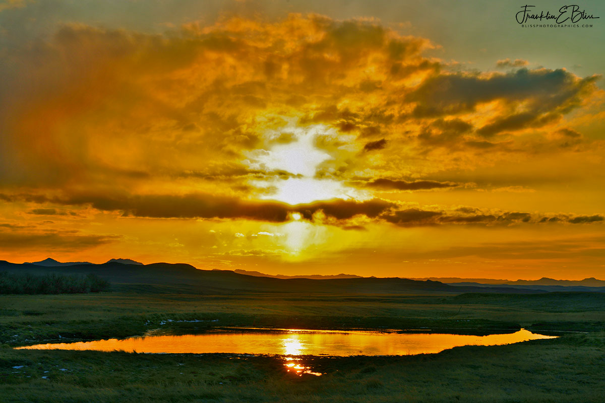 Wetland Backcountry Golden Sunset