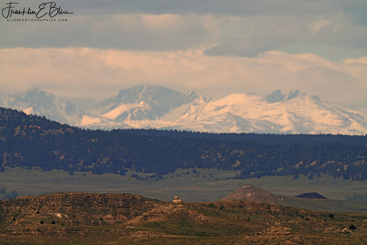 Spring Snow on the BigHorns