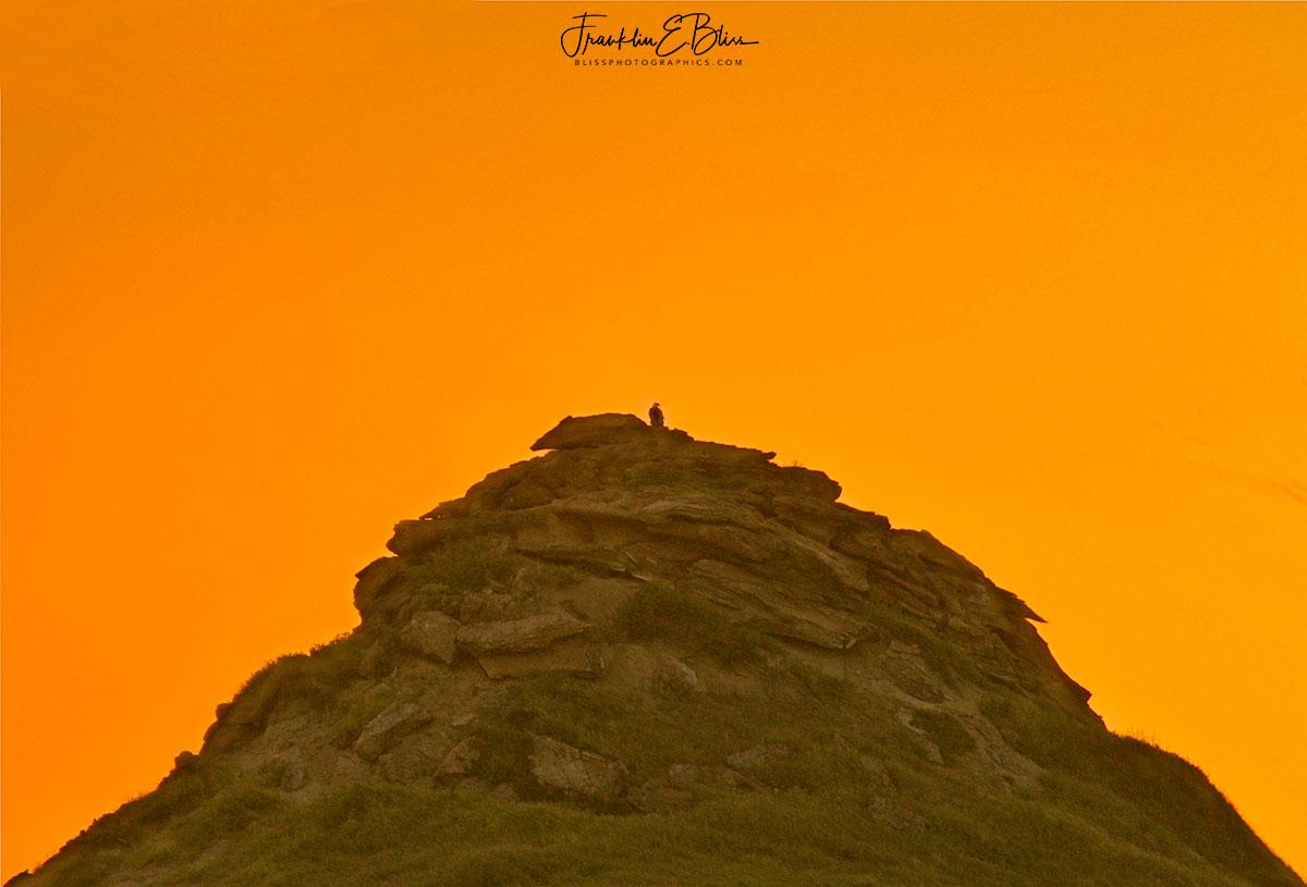 Eagles Perch Alpenglow Evening