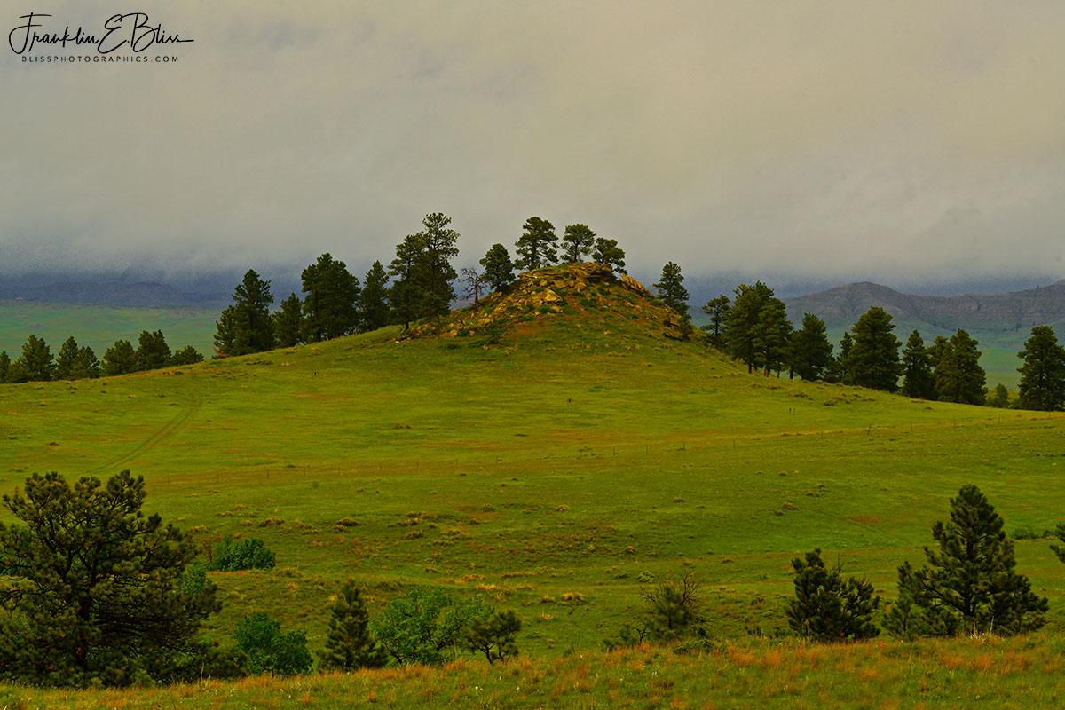 Green Season in Wyotana