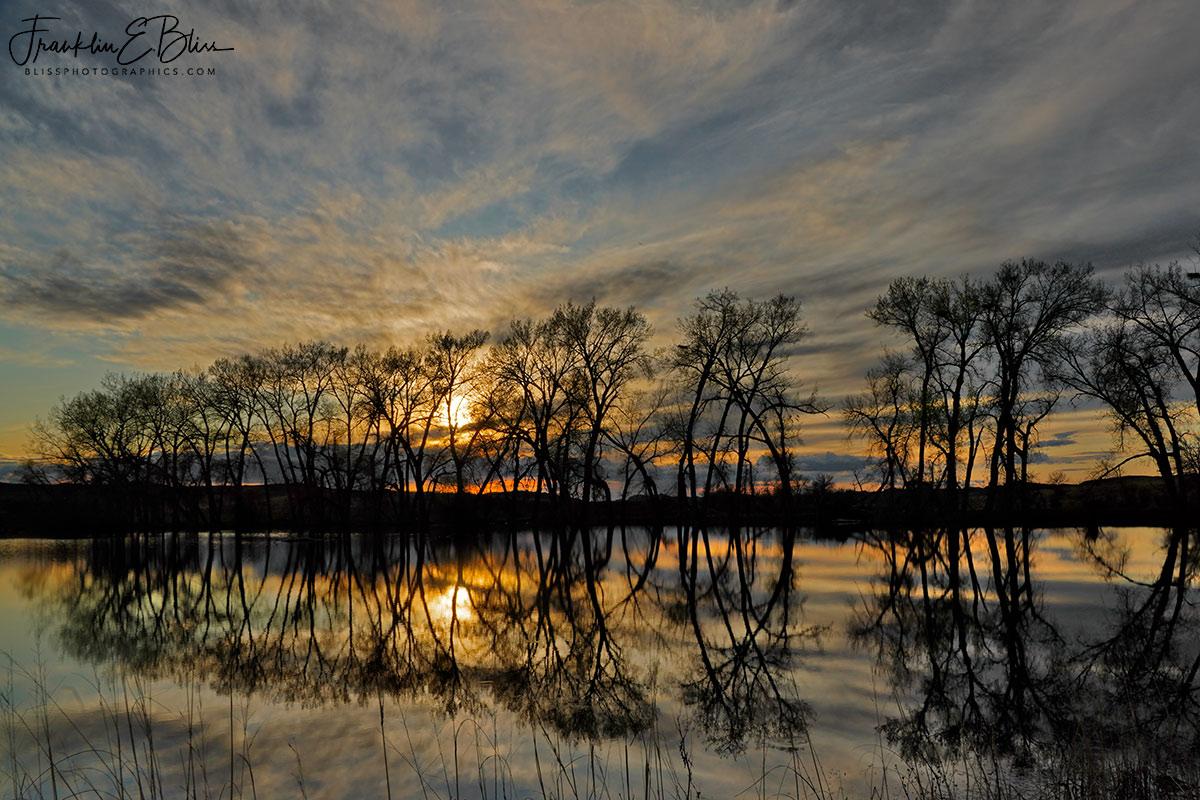 Reflections Backcountry Artesian Pond