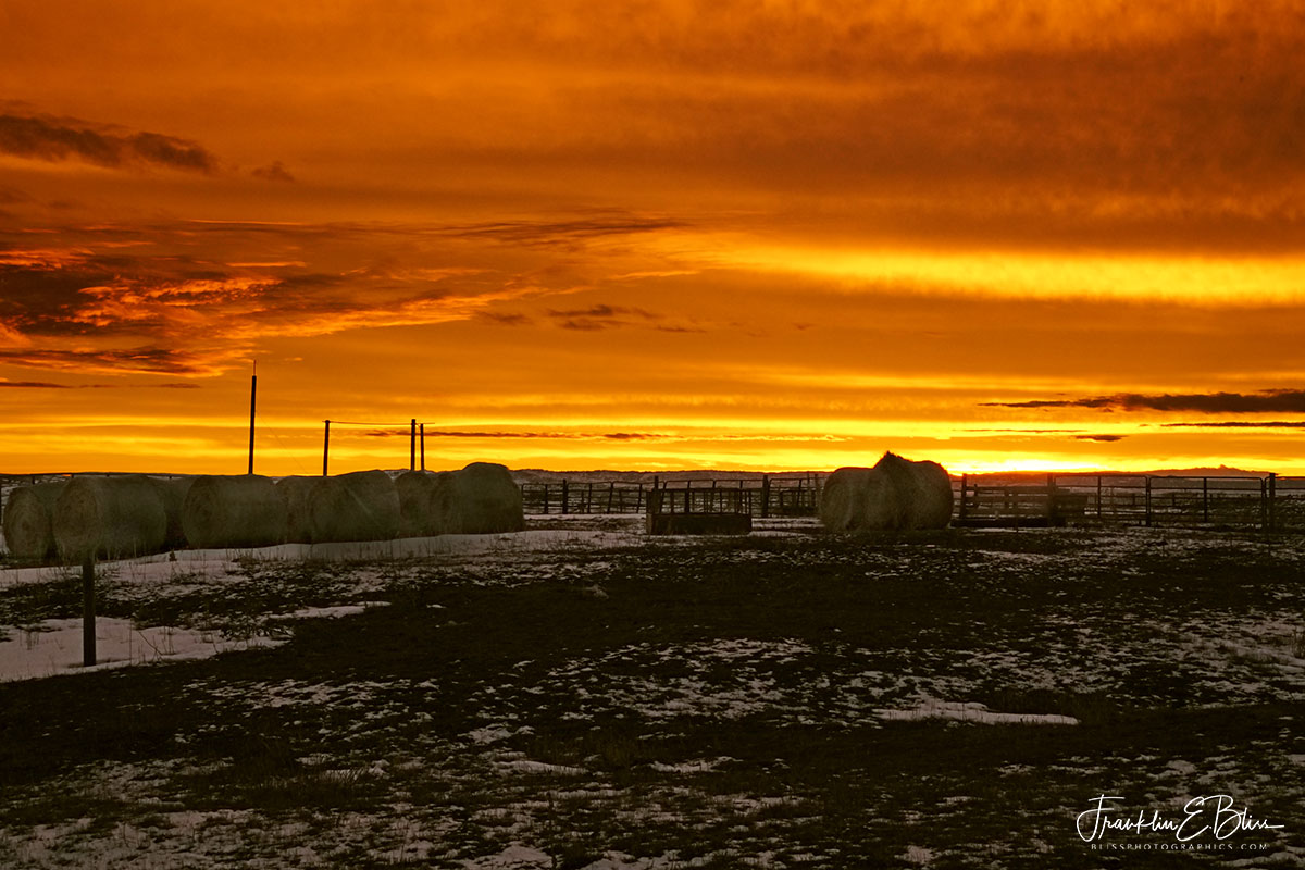 Twilight Across the Corral
