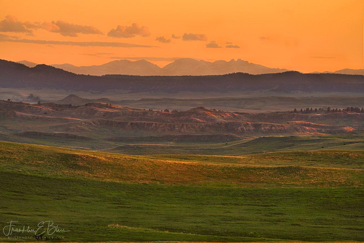 Summer Sunset Sideshow Bighorns