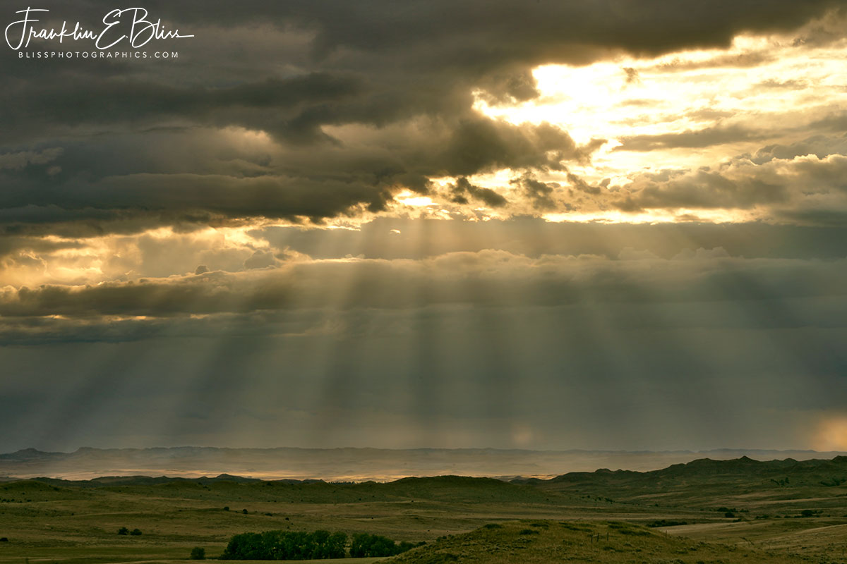 Crepuscular Rays from Above