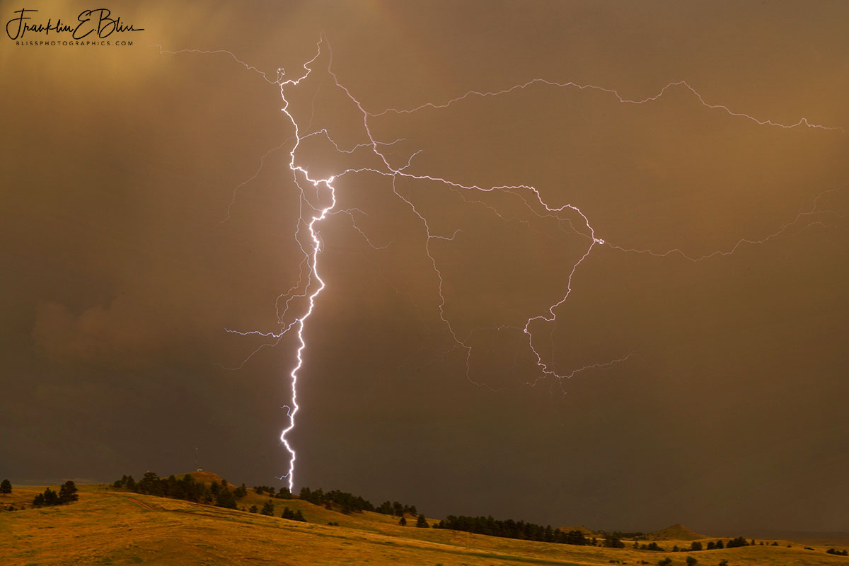 The Whole Lightning Bolt