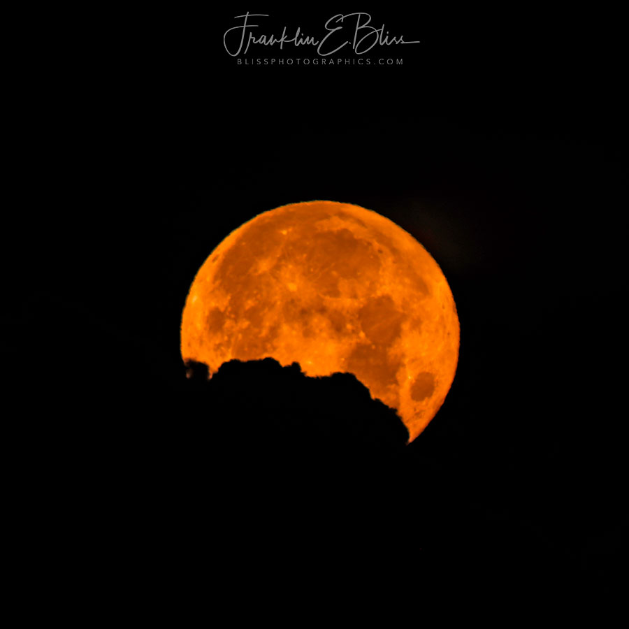 Buck Moon Cloud Silhouette